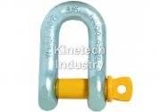 Chei de tachelaj drepte cu bolt filetat G-3151