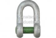 Chei de tachelaj drepte cu cap imbus tip G-4159